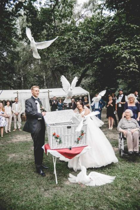 Wedding Hochzeit Schloß Schönfeld Tauben