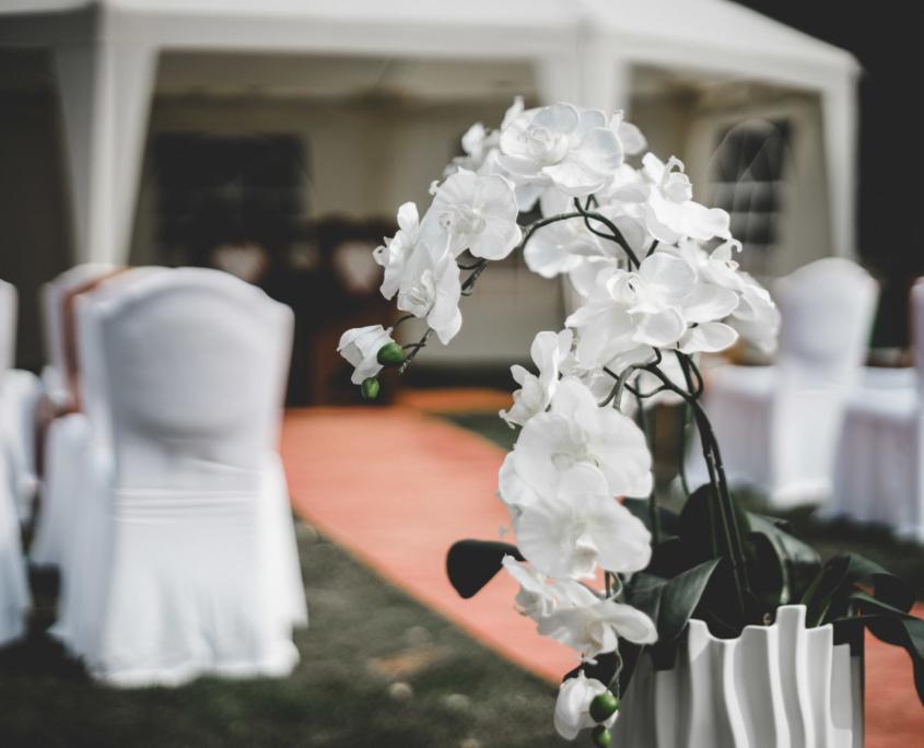Hochzeitsfotograf Stendal After wedding Hochzeitsstrauß